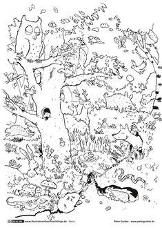 Ausmalbild oder Abpausen für Kinder - Natur Waldtiere *** Wood ...