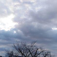 おはようございます曇り空の月曜日今日は確定申告のため休みです #sky #cloud #空 #雲 #イマソラ #goodmorning #おはよう