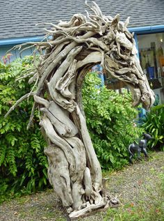 Horse head in driftwood