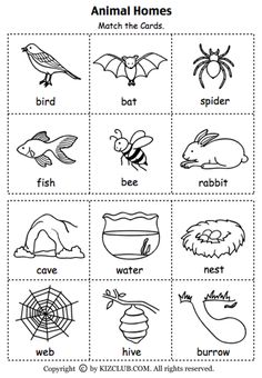 Animal Habitat Worksheets for Kindergarten. 20 Animal Habitat Worksheets for Kindergarten. Animal Worksheets, 1st Grade Worksheets, Science Worksheets, Kindergarten Worksheets, Worksheets For Kids, Alphabet Worksheets, Printable Worksheets, Free Printable, Kindergarten Lesson Plans