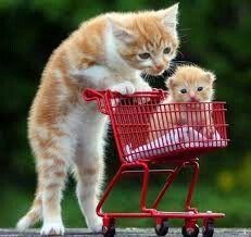 Madre e hijo en el supermercado