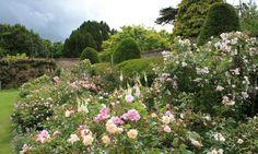 Zahrady jako v Midsomeru