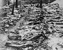 photo from 1943 exhumation of mass grave of Polish officers killed in NKVD in Katyn Forest in 1940. Source Wikipedia/Joseph Stalin