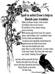 Spell to enlist Crow's to Banish your trouble