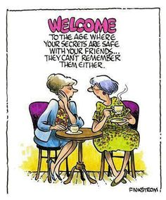 Welcome to the age where your secrets are safe with your friends they can't remember them either funny boomer humor adult senior Funny Shit, The Funny, Funny Jokes, Funny Stuff, Silly Jokes, Alter Humor, Old Age Humor, Menopause Humor, Aging Humor