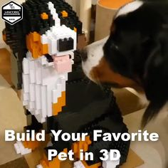 Adult Crafts, Fun Crafts, Origami Animals, Experience Gifts, Diy Stuffed Animals, New Hobbies, Diy Birthday, Pet Gifts, Dog Owners
