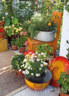Herkulliset värit ovat tämän ryhmän juju - miten vanha tuoli ja kattilat ovatkin juuri samaa sävyä! www.kotipuutarha.fi