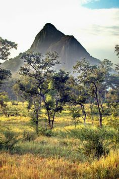Gal Oya in Sri Lanka | See More Pictures | #SeeMorePictures