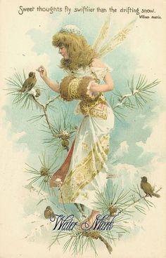 Winter fairy feeding the birds in a snowy pine-tree. Vintage Postcards, Vintage Images, Vintage Art, Fairy Land, Fairy Tales, Blue Fairy, Vintage Illustration, Fairy Paintings, Mermaid Fairy