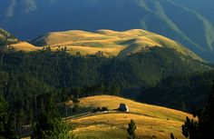 Zapadna Srbija - planina Zlatibor