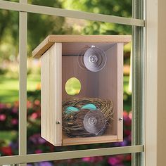 Window view bird house. Not sure I want this on my window, but love the idea of a birdhouse with a plexiglass back and a removable panel so I could show the birds to the kids.