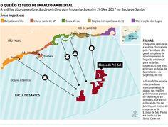 Biólogos criticam estudo de impacto ambiental do pré-sal - 26/07/2014 - Ambiente - Folha de S.Paulo