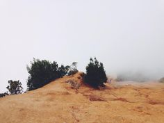 🔍 Landscape desert dry fog - new photo at Avopix.com    🆓 https://avopix.com/photo/48602-landscape-desert-dry-fog    #sky #landscape #summer #sun #outdoor #avopix #free #photos #public #domain
