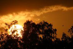 Sunset at Kenya 2