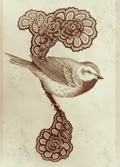Vintage bird and lace- would totally get a tattoo like this, maybe on my shoulder blade