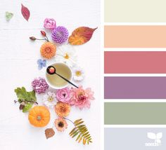 today's inspiration image for { foraged autumn } is by . thank you, Cristina, for another amazing image share! Color Schemes Colour Palettes, Colour Pallette, Color Trends, Color Combos, Vintage Colour Palette, Vintage Colors, Color Harmony, Color Balance, Design Seeds