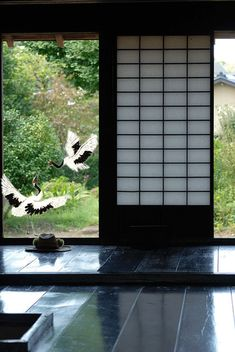 Fenêtre, hérons blancs du Japon, GIF animé