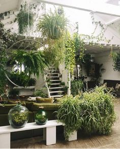 Mega greenterior inspiration from in London! Do us such a green . Indoor Garden, Indoor Plants, Home And Garden, Decoration Plante, Green Life, Green Plants, Hanging Plants, Elle Decor, Plant Decor