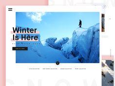 Billabong Snow Landing by Andrea Montoya #Design Popular #Dribbble #shots