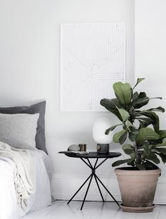 Silke Bonde x Nordic Summer // clean and white bedroom with plants