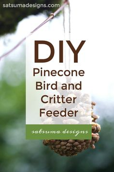DIY Pinecone Bird and Critter Feeder – Satsuma Designs