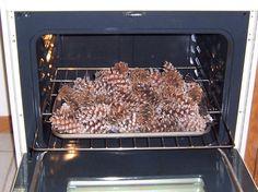 pinecones (4)e