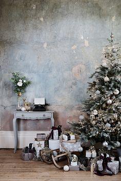 Brissi - Christmas 2017 (1).jpg