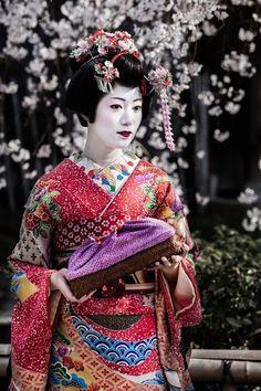 Geisha & Sakuras, Japan,