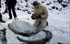 Oil workers make mammoth find