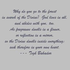 Words of Sri Guru Tegh Bahadur Ji Sikh Quotes, Gurbani Quotes, Quotable Quotes, Punjabi Quotes, Guru Tegh Bahadur, Guru Granth Sahib Quotes, I Love You God, Universe Love, Love Truths