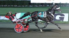 Wiggle It Jiggleit strong in Meadowlands Pace victory