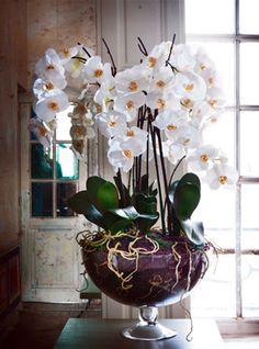 decoracion con orquideas artificiales - Buscar con Google