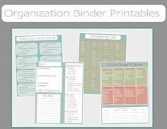 Free Printable Household Organization Binder. OMG this lady goes above and beyond! Amazing.