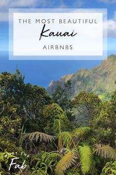 If you're planning a trip to Kauai Hawaii then finding a place to stay is super important! Here is a list of the most beautiful Kauai Airbnbs!  kauai hawaii airbnb | kauai airbnb | best airbnb Kauai | best airbnb in Kauai | best places to stay in Kauai | kauai places to stay | kauai hawaii best places to stay | kauai hawaii | kauai beaches  #kauaihawaiiairbnb #kauaiairbnb #bestairbnbkauai #bestairbnbinkauai #bestplacestostayinkauai #kauaiplacestostay #kauaihawaiibestplacestostay #kauaihawaii