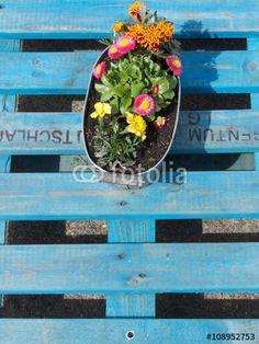 Blechschale mit bunten Frühlingsblumen auf einer blau gestrichenen Europalette in einem Beachclub in Großauheim am Main