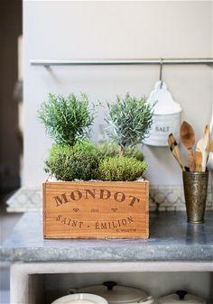 Indoor gardening: quirky ways to bring nature inside - Telegraph