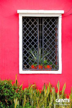 San Antonio desde sus ventanas | Gente San Antonio, Cali Colombia, Tamarindo, Garage Doors, Outdoor Structures, Columbia, Outdoor Decor, House, Places