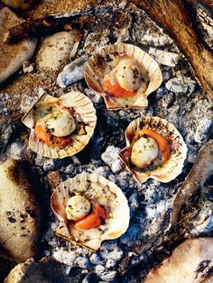 47198a353a7 Scallops cooked in fire embers with seaweed butter recipe from Gather by  Gill Meller