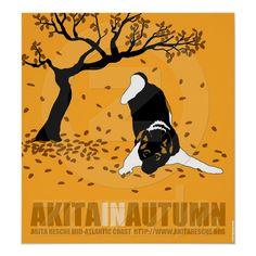 Akita In Autumn (32 x 34.5) Poster from Zazzle.com Akita Puppies,