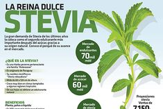 #Infografia #Stevia la reina dulce vía @candidman La gran demanda de #Stevia de los últimos años la coloca como el segundo #Edulcorante más importante después del #Azucar, gracias a su #OrigenNnatural. Conoce el porqué de su avance en el mercado.