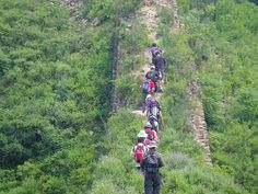 In the morning, your tour guide and driver will pick you up from the hotel at about o'clock, then drive to the Jingshanling Great Wall. Hiking Tours, Tour Guide, Beijing, Wall, Pekin Chicken, Travel Guide