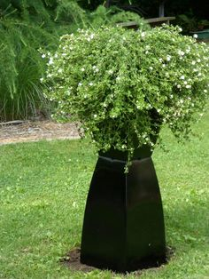 Ideas to Cover Well Pump. 23 Ideas to Cover Well Pump. Pretty Backyard Landscaping to Hide Well Pump Kew Gardens, Outdoor Gardens, Well Pump Cover, Septic Tank Covers, Creative Landscape, Landscape Designs, Olive Garden, Outdoor Projects, Outdoor Ideas