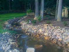 Here's my backyard stream and pond created with pond liner, pumps, and hard work