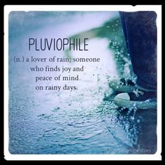 Pluviophile  (n.) A lover of rain. Someone who finds joy and peace of mind on rainy days.