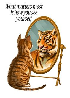 'Cat and Tiger Mirror Message' Poster by HazyNZ Cute Baby Animals, Animals And Pets, Funny Animals, Beautiful Cats, Animals Beautiful, Cute Cat Wallpaper, Cute Cats And Dogs, Buy A Cat, Spirit Animal