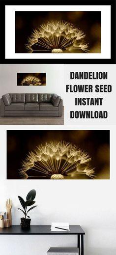 Dandelion Photograph Wall Art, Dandelion Macro, Dandelion Flower Seeds, Nature Macro Print, Country Farm Decor, Instant Download Printable