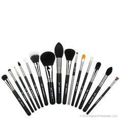 The Sigma Beauty Premium Kit contains fifteen signature quality brushes for the face, eyes and lips. These brushes are unique, versatile and the perfect addition to complete your brush collection.