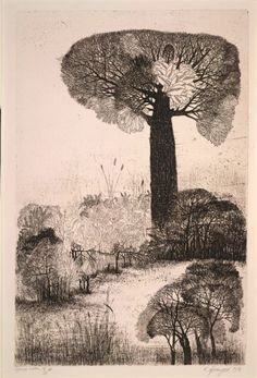 Untitled (forest scene) (1976) by Indian painter & printmaker K. Laxma Goud (b.1940). Copper etching on paper, 48 x 31.5 cm. via A London Salamagundi. source: British Museum