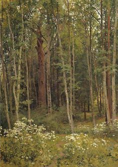 Fan account of Ivan Shishkin, a Russian landscape painter of the second half of century. Russian Landscape, Landscape Art, Landscape Paintings, Landscape Photography, Tree Paintings, Russian Painting, Russian Art, Forest Painting, Forest Illustration