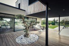 M House / CLAB Architettura
